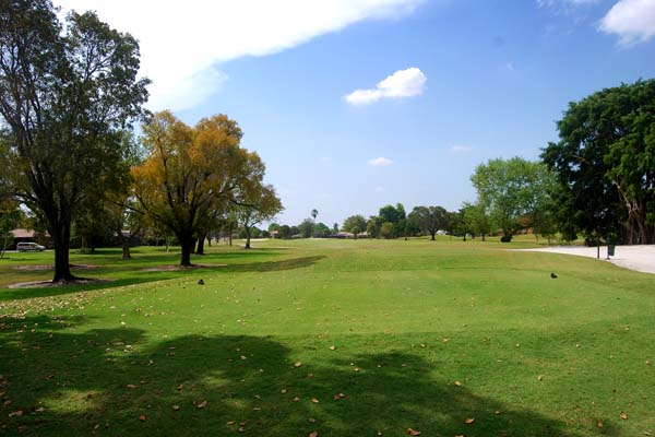 The fairways are a vivid green on a sunny day at the course